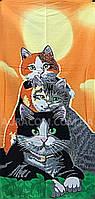 Полотенце пляжное,  котики, Турция