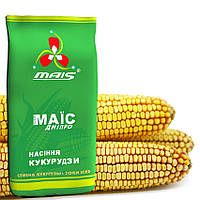 Семена кукурузы Маис  гибрид ДМС Тренд ФАО-290