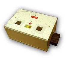 Інкубатор автоматичний переворот+вентилятор Курочка Ряба на 60 яєць