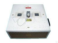 Инкубатор электро Гусыня на 54 шт с автоматическим переворотом.