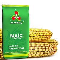 Семена кукурузы Маис  гибрид ДМС 3709 ФАО-370
