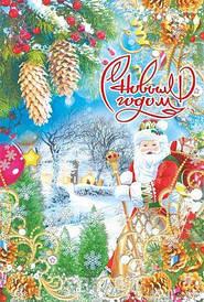 "Пакет\прорезн\р (28*42)""Дед Мороз Новй год"" ХВГ (50 шт)"