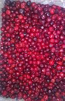 Замороженные фрукты. Вишня без кісточки, шокова заморозка, Україна, оптовий продаж