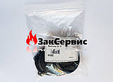 Мембрана (большая) Beretta Mynute, Super Exclusive R6882, фото 2