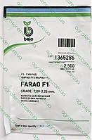 Семена капусты Фарао FARAO F1 2500с, фото 1