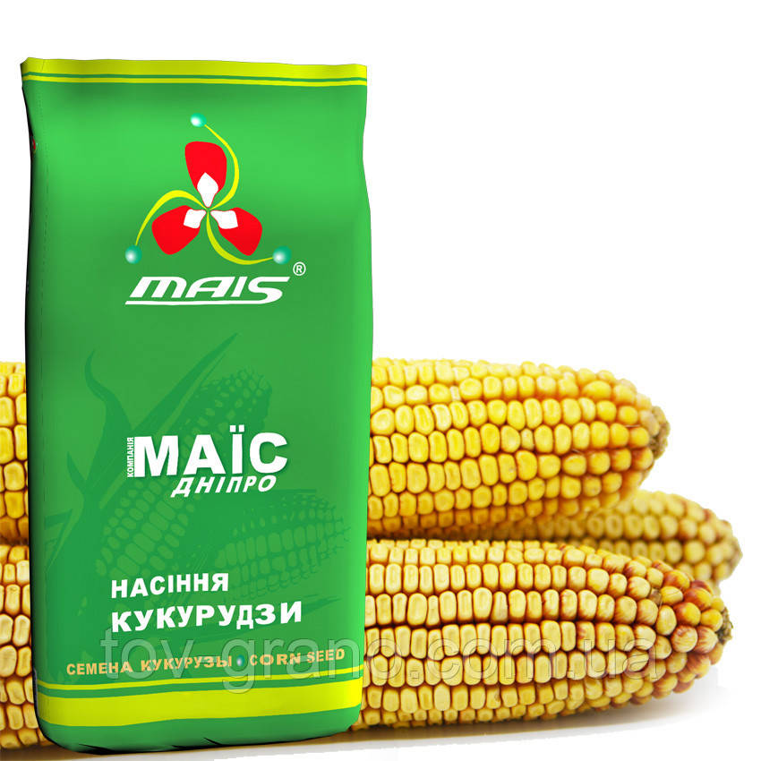 Семена кукурузы Маис  гибрид ДМС 3908 ФАО-390