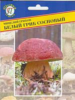Мицелий грибов Белый гриб сосновый