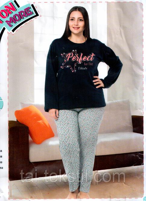 DALMINA пижама женская на байке БАТАЛ Турция (2XL-4XL) 48661