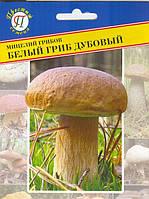 Мицелий грибов Белый гриб дубовый