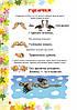 НУШ Пальчикові вправи. 1-4 класи. Вчителю початкових класів. Автор Волкова І. 978-617-09-3280-8, фото 3