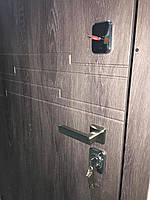 Двери входные Portala. Концепт New / Эстепона 3 (квартира), фото 1
