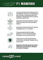 Семена огурца Мамлюк F1 (Гавриш), 500 семян — партенокарпический корнишон, ранний (38-43 дн.), фото 2