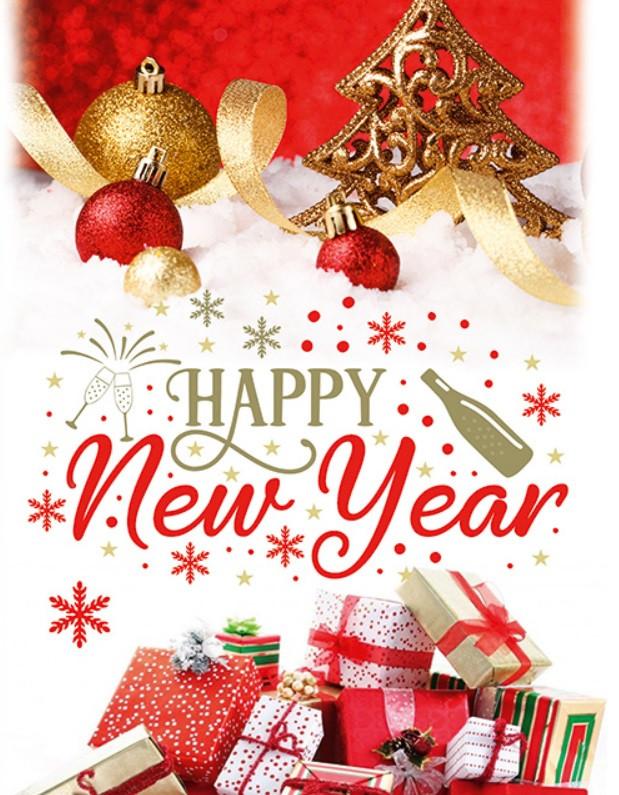 Новогодний подарочный пакет Новый СРЕДНИЙ 17*26*8 см