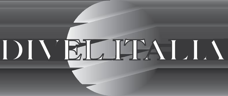 Фотохромная лінза DIVEL ITALIA 1.6 з покриттям Silken