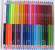 Двухцветные карандаши Acmeliae, треугольные 24 штуки/48 цветов