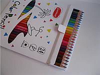 Цветные карандаши Acmeliae, треугольные 24 цвета, фото 1