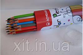 Цветные карандаши в металлическом тубусе Acmeliae, 36 цветов