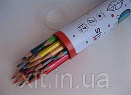 Цветные карандаши в металлическом тубусе Acmeliae, 24 цветов