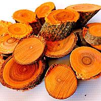 Набор спилов (срезов) косых ассорти оранжевых 100шт (20-35мм)