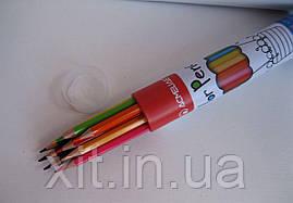 Цветные карандаши в металлическом тубусе Acmeliae, 12 цветов
