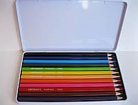Цветные карандаши в металлической коробке Acmeliae, 12 цветов