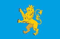 Флаг Львовской области 90х150см