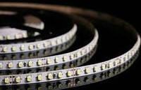 Светодиодная лента 3528 без влагозащиты 120 светодиодов на 1м БЕЛЫЙ ХОЛОДНЫЙ