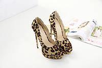 Леопардовые туфли на шпильке, фото 1