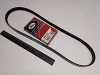 Ремень генератора ручейковый ВАЗ 2110, 2170 (с ГУР + кондиционер), GATES (6PK1123)