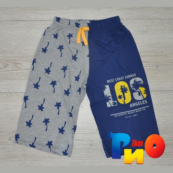 """Летние детские шорты """"Пальма"""", трикотаж, для мальчика ростом 8-11 лет (4 ед. в уп. ), Цвет №5"""