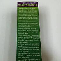 """Бальзам Лосєва """"Люцерна"""" 30 мл. - сприяє регенерації клітин печінки і допомагає виведенню токсинів., фото 2"""