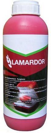 Протравитель Ламардор 40%, т.к.с. Bayer - 1 л., фото 2
