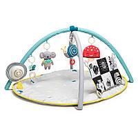 Развивающий музыкальный коврик с дугами коллекции Мечтательные коалы - Мир вокруг Taf Toys (12435)
