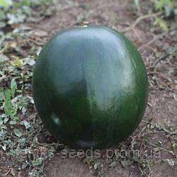"""Арбуз """"KS 160 F1"""" семена"""