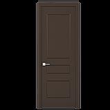 Двері міжкімнатні Rodos Salsa, фото 3