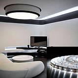 Светодиодная лента BIOM Professional G.2 2835-60 NW нейтральный белый, негерметичная, 5метров, фото 5