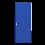 Дверь межкомнатная Rodos Prima Alum, фото 4