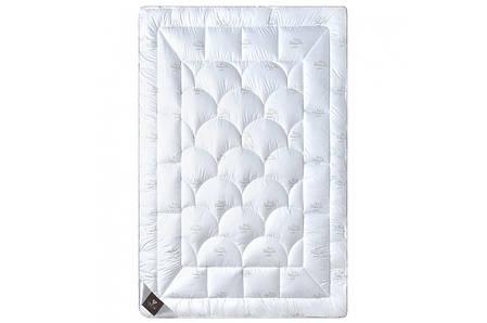 Одеяло 200х220 Зимнее, Super Soft Classic, фото 2