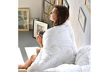 Одеяло 200х220 Зимнее, Super Soft Classic, фото 3