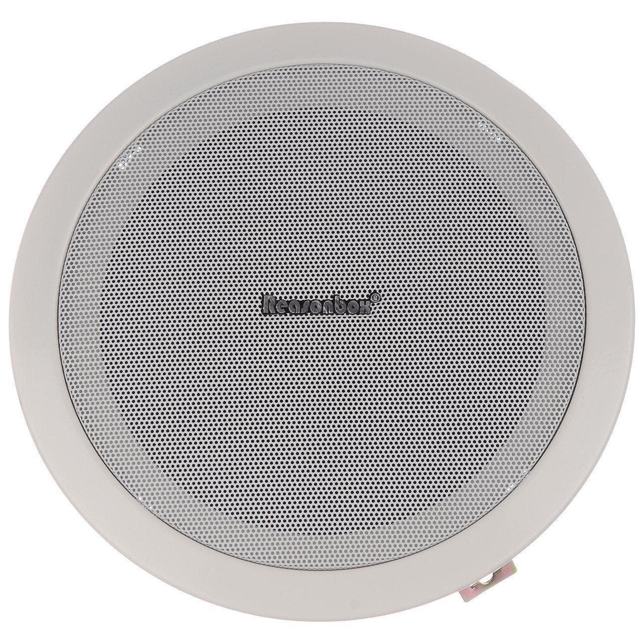 Потолочная акустика P601 | Акустическая система | Колонки