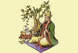 История чая в Китае от начала и до сегодня.