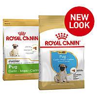 Royal Canin (Роял Канин) Pug Puppy корм для щенков породы мопс в возрасте до 10 месяцев, 1,5 кг