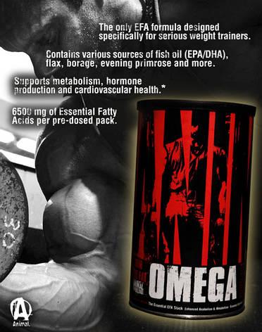 Комплекс омега ANIMAL OMEGA  Universal Nutrition - 30 пак, фото 2