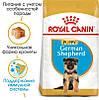 Royal Canin (Роял Канин) German Shepherd Puppy - корм для щенков до 15 месяцев, 12 кг