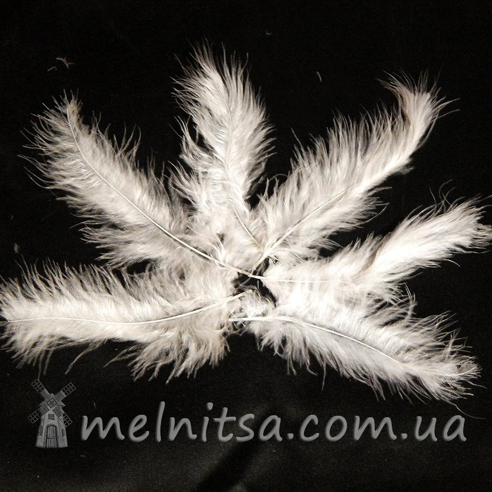 Перья марабу 10-15 см, белые (5 шт)