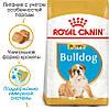 Royal Canin BULLDOG Puppy - корм для щенков английского бульдога 12кг.