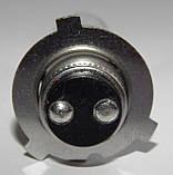 """Мотолампа """"NARVA"""" M5 (12V)(35/35W), фото 4"""