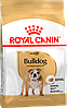 Royal Canin (Роял Канин) Bulldog для собак породы Английский бульдог старше 12 месяцев, 12кг.