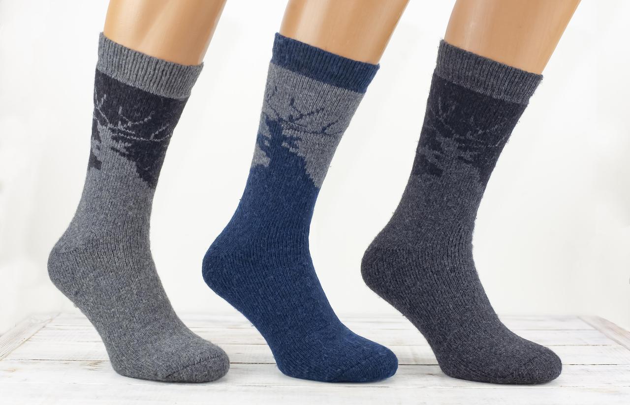 Чоловічі термоноски шкарпетки шерстяні Kardesler з махрою комбінований розмір 40-46 12 шт в уп мікс кольорів