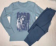 """Пижама для мальчика хлопковая  ТМ """"Фламинго"""", фото 1"""